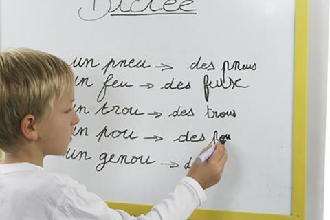 Conseils pour le français